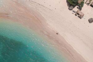 Wisata Banyuwangi Baluran Pantai Bama