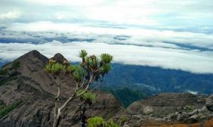 Puncak Sejati Gunung Raung Wisata Gunung Banyuwangi