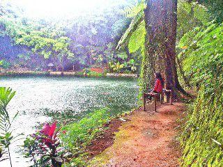 Rowo Bayu Wisata Songgon Banyuwangi