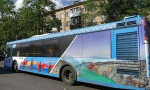 Iklan Promosi Banyuwangi Rusia