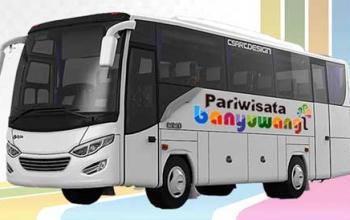 Sewa Mobil Banyuwangi Bus Medium