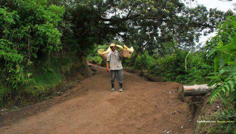 Akses Jalan Tanah Pendakian Kawah Ijen