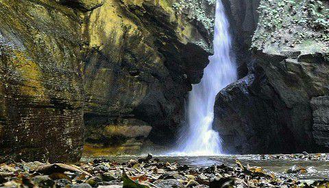 Wisata Banyuwangi Air Terjun Pertemon