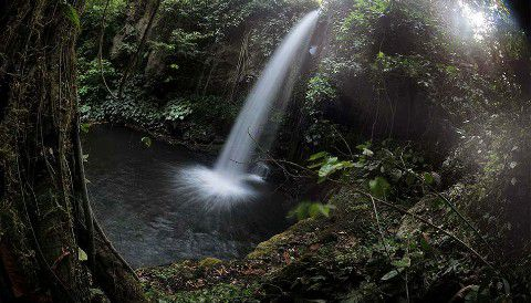 Wisata Banyuwangi Air Terjun Selogiri