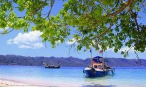 Boat - Wisata Teluk Biru Banyuwangi