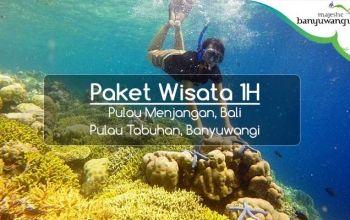 Paket-Wisata-Banyuwangi-1H-Snorkeling-Pulau-Menjangan-Tabuhan
