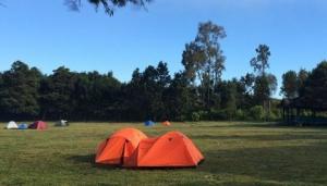 Camping Ground Pos Paltuding Kawah Ijen Banyuwangi