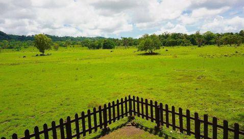 Alas Purwo Explore Banyuwangi