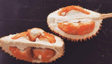 Durian Merah Fakta Unik Banyuwangi