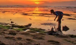Wisata Banyuwangi Pantai Plengkung